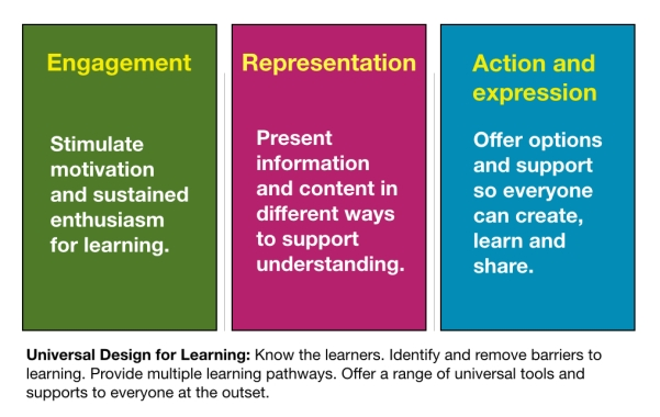 3 principles of UDL